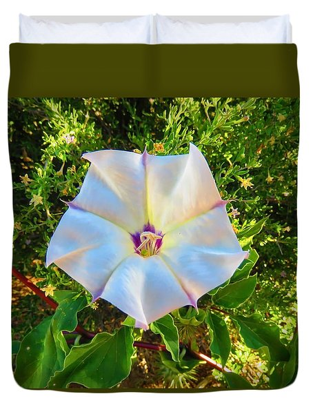 Duvet Cover featuring the photograph Sacred Datura In The Golden Hour by Judy Kennedy