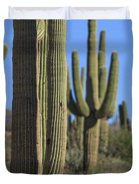 Saguaro Cactus In The Arizona Desert Duvet Cover