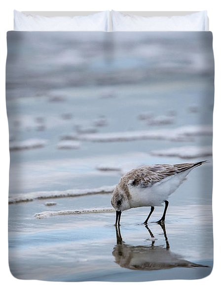 Sanderling Foraging Duvet Cover