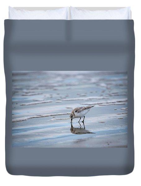 Sanderling Foraging Duvet Cover