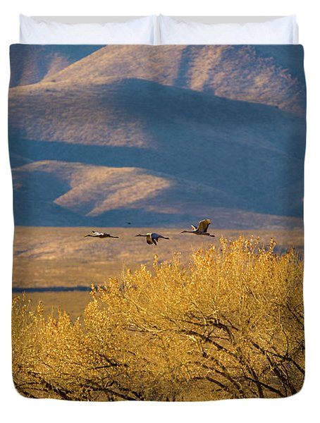 Sandhill Cranes Near The Bosque Duvet Cover