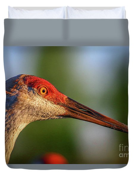 Duvet Cover featuring the photograph Sandhill Sunlight Portrait by Tom Claud