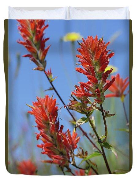 Scarlet Indian Paintbrush At Mount St. Helens National Volcanic  Duvet Cover