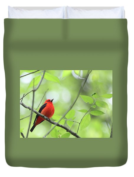 Scarlet Tanager Duvet Cover