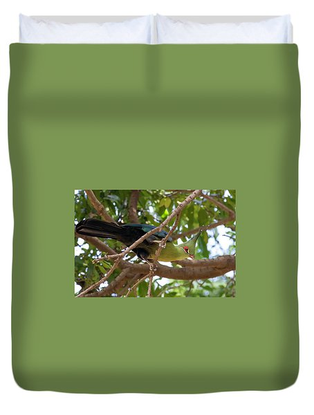 Schalow's Turaco Duvet Cover