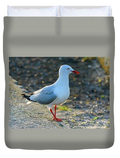 Seagull On The Breakwall Duvet Cover