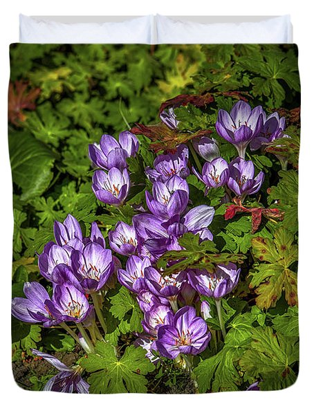 Duvet Cover featuring the photograph September Crocus #h9 by Leif Sohlman
