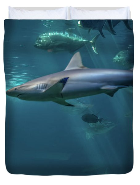 Shark Attack Duvet Cover