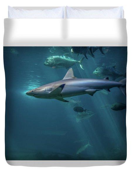Shark Attack Duvet Cover