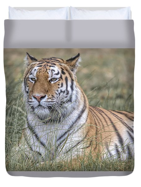 Shere Khan Duvet Cover