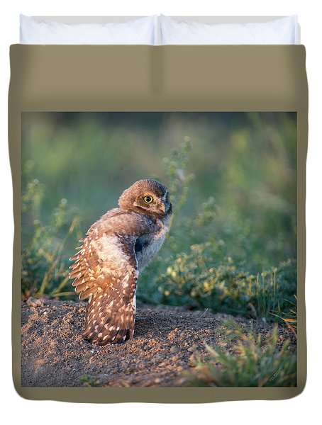 Shy Young Burrowing Owl Duvet Cover