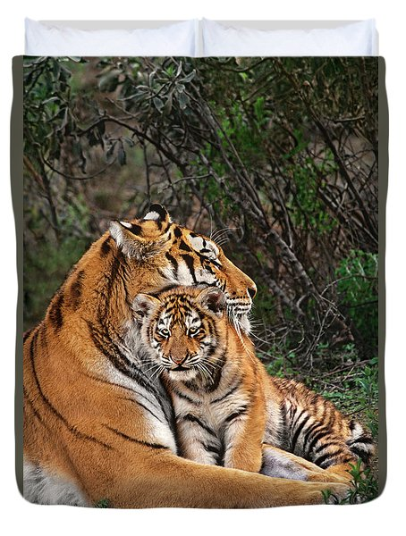 Siberian Tiger Mother And Cub Endangered Species Wildlife Rescue Duvet Cover