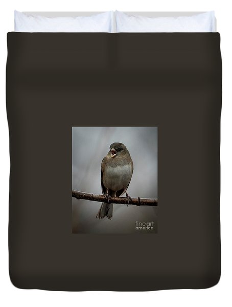 Singing Junco 1 Duvet Cover