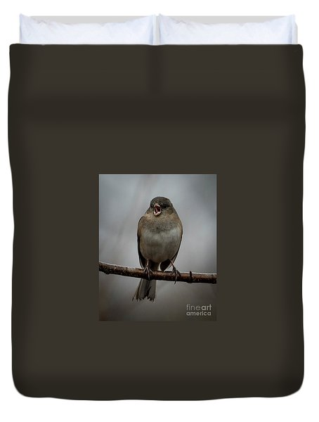 Singing Junco 2 Duvet Cover