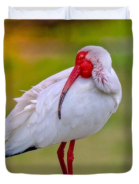 Sleepy Ibis Duvet Cover