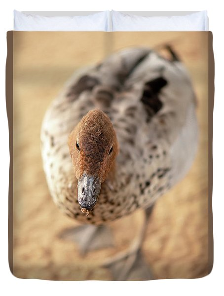 Small Duck On The Farm Duvet Cover