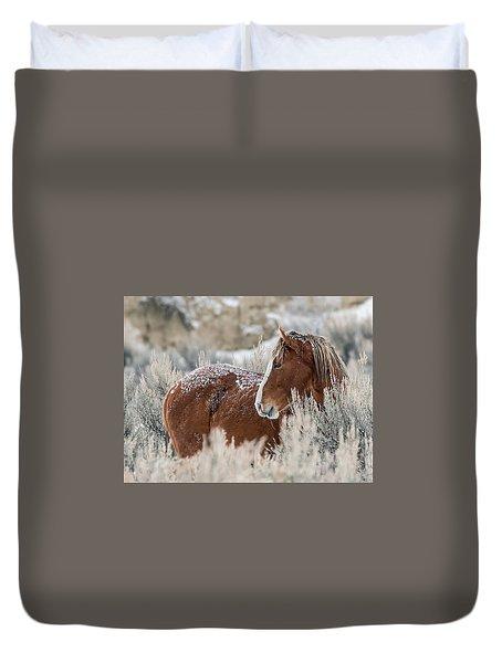 Snow Dusted Mustang Stallion Duvet Cover