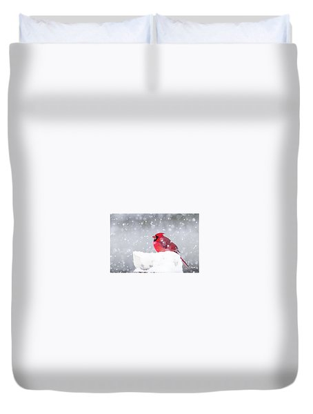 Duvet Cover featuring the photograph Snowy Cardinal by Lori Coleman