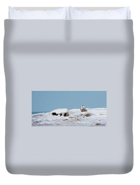 Snowy Day Duvet Cover