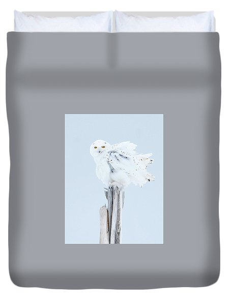 Snowy Owl Feather Shake Duvet Cover