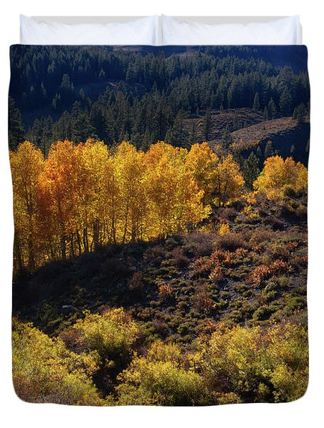 Sonora Pass Duvet Cover