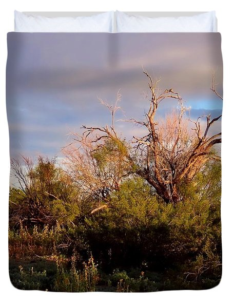 Sonoran Desert Spring Rainbow Duvet Cover