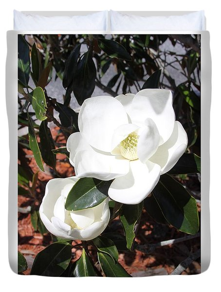 Sosouthern Magnolia Blossoms Duvet Cover