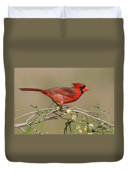 South Texas Cardinal Duvet Cover