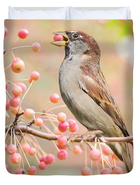 Duvet Cover featuring the photograph Sparrow Eating Berries by Top Wallpapers