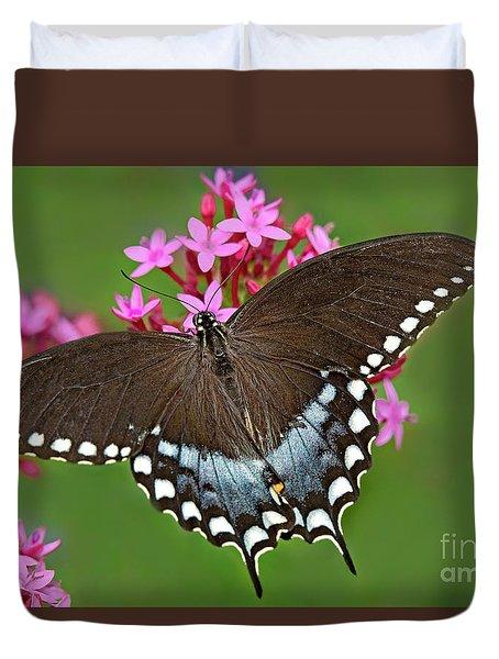 Spicebush Swallowtail Papilio Trollus Duvet Cover