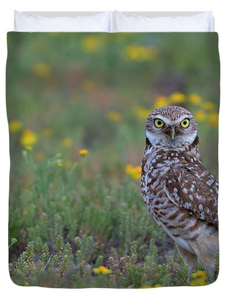 Springtime Burrowing Owl Duvet Cover