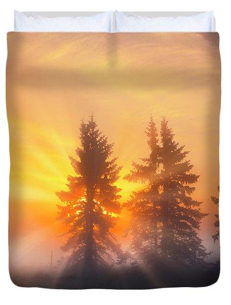 Spruce Trees In The Morning Duvet Cover