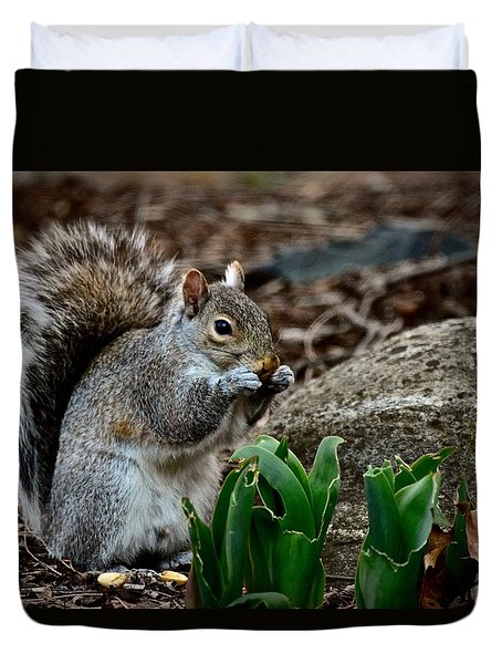 Squirrel And His Dinner Duvet Cover