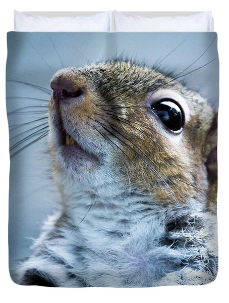Squirrel With Nose In The Air Duvet Cover