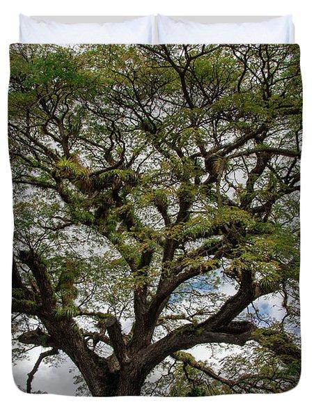 St. Kitts Saman Tree Duvet Cover
