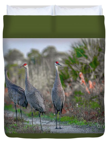 Duvet Cover featuring the photograph Standing Sandhills by Tom Claud