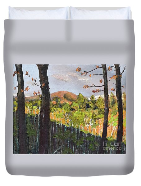 Duvet Cover featuring the painting Summer At Pink  Knob In Ellijay by Jan Dappen