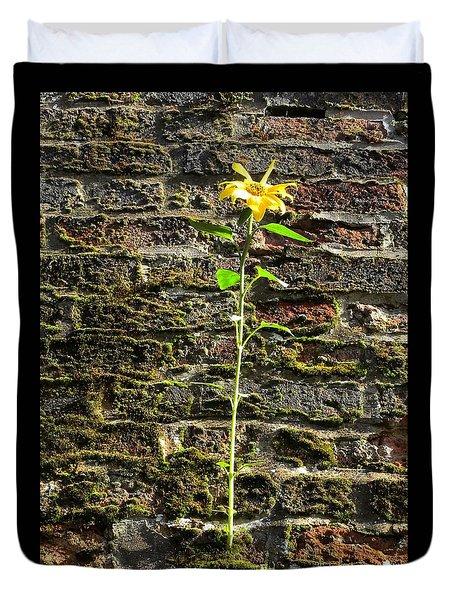 Sunflower On The Wall Duvet Cover