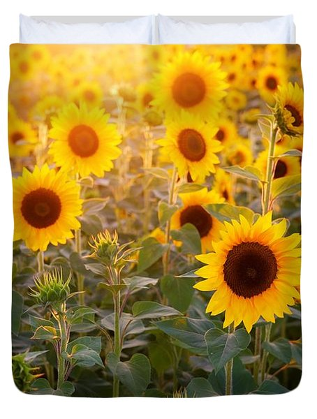 Sunflowers Field Duvet Cover