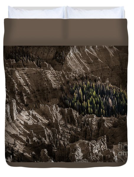 Surrounded Duvet Cover