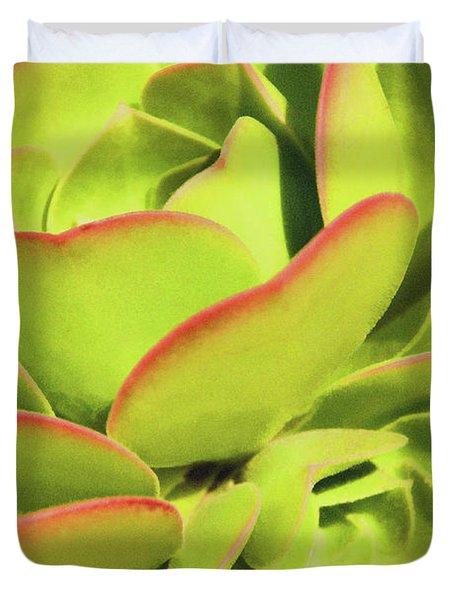 Sweet Succulents I Duvet Cover