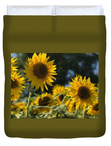 Sweet Sunflowers Duvet Cover