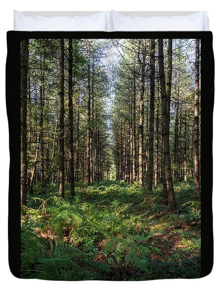 Tall Trees In Sherwood Forest Duvet Cover