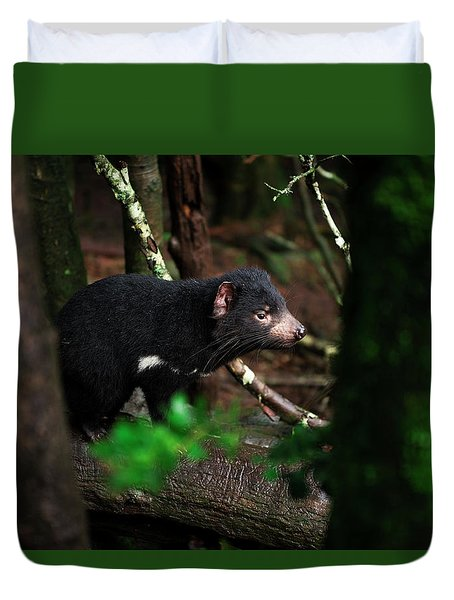 Duvet Cover featuring the photograph Tasmanian Devil Found During The Day In Tasmania. by Rob D