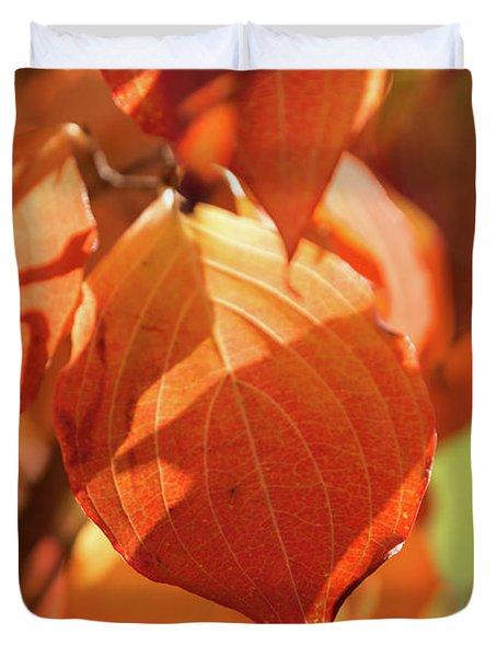 That Autumn Light Duvet Cover