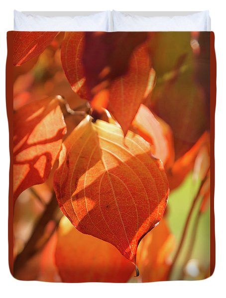 That Autumn Light Duvet Cover