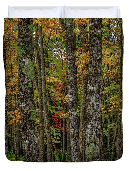 The Fall Woods Duvet Cover