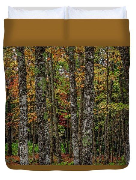 The Fall Woods Duvet Cover