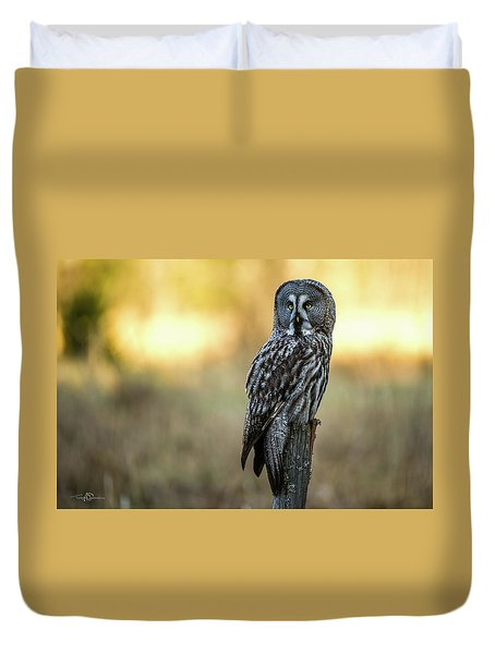 The Great Gray Owl In The Morning Duvet Cover