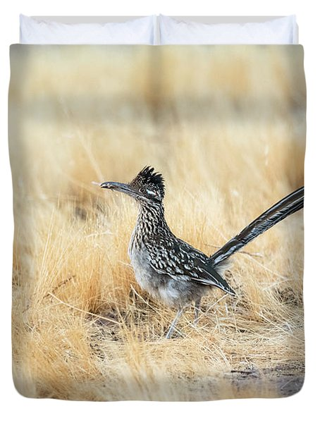 The Greater Roadrunner On The Run  Duvet Cover